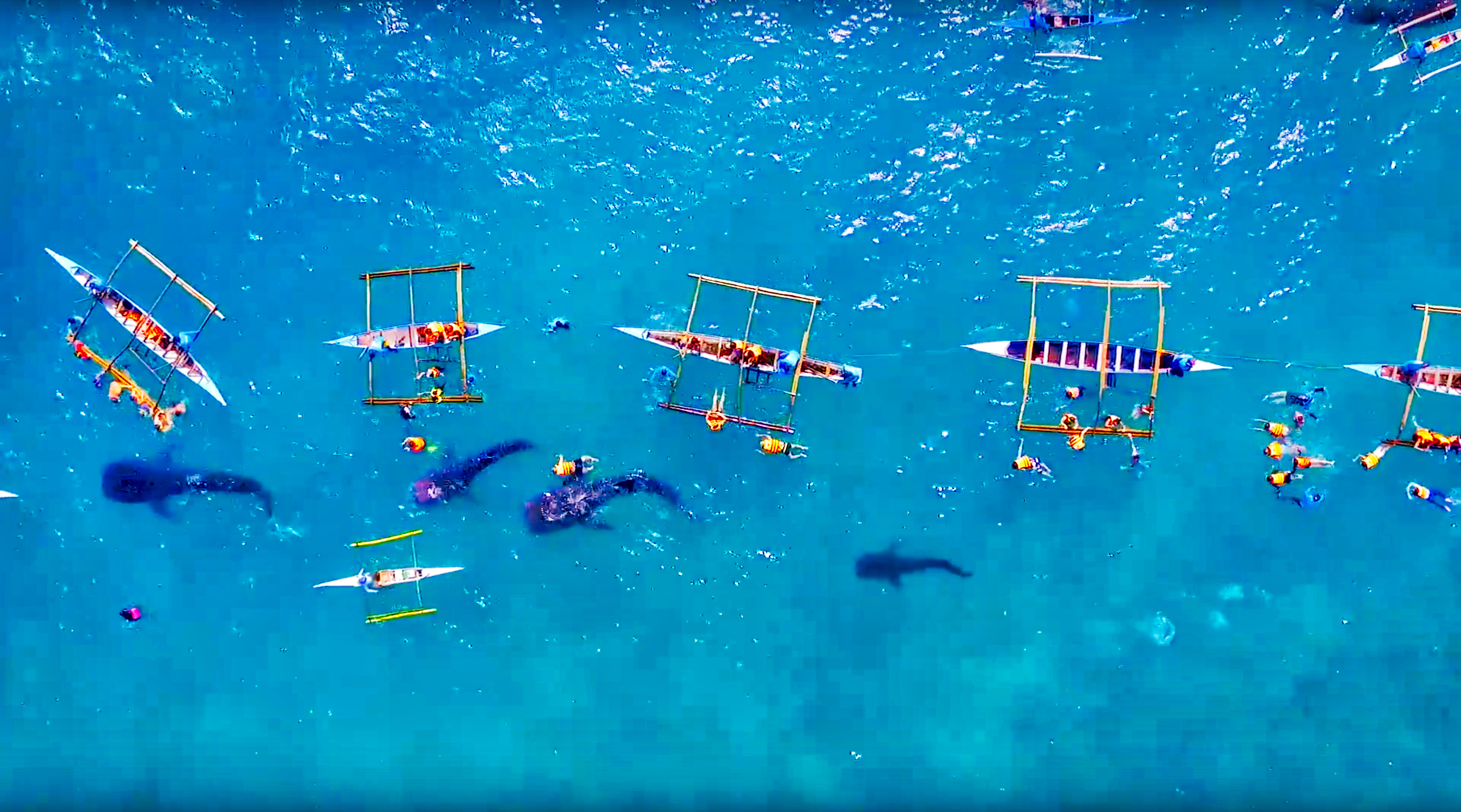 drone pilot with Whale Sharks Oslob Cebu Aerial View on B 17g Flying Fortress further Djis Smarter Phantom 4 Drone Can Avoid Obstacles And Track Objects All On Its Own further Top 10 Worst Airlines In The World 2016 additionally Missed Part 107 Test Prep Questions in addition Illinois Police Get Approval For Drone Use.
